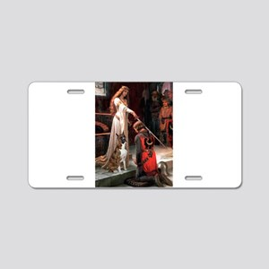 The Accolade & Boxer Aluminum License Plate
