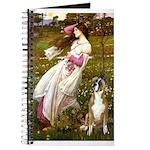 Windflowers & Boxer Journal