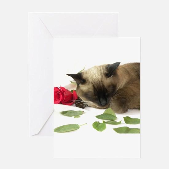 Cute Siamese cat Greeting Card