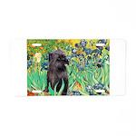 Irises / Cairn (#17) Aluminum License Plate