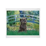 Bridge /Cairn Terrier (w) Throw Blanket