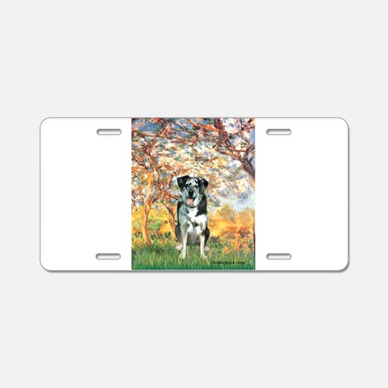 Spring / Catahoula Leopard Dog Aluminum License Pl