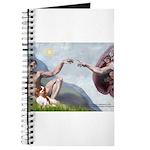 Creation / Cavalier Journal