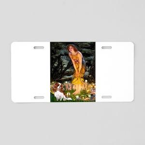 Fairies & Cavalier Aluminum License Plate