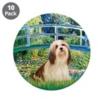 Bridge / Lhasa Apso #4 3.5