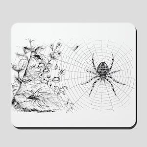 Creepy Spider Web Line Art Mousepad