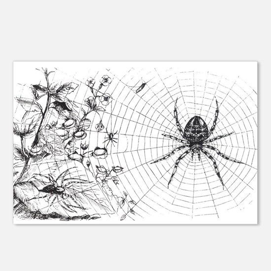 Creepy Spider Web Line Art Postcards (Package of 8