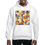 Carnival Balloons Hooded Sweatshirt