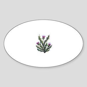 scottish thistle Oval Sticker