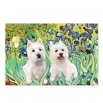 Irises-Westies 3and11 Postcards (Package of 8)