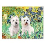 Irises-Westies 3and11 Small Poster