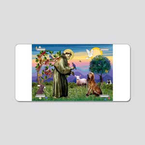 St Francis & Bloodhound Aluminum License Plate