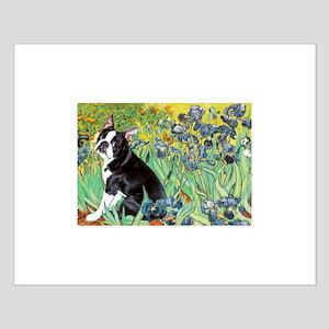 Irises & Boston Terrier Small Poster