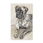 English Mastiff (Brindle) 20x12 Wall Decal