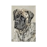 English Mastiff (Brindle) Rectangle Magnet