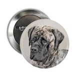 English Mastiff (Brindle) 2.25