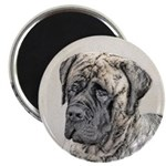 English Mastiff (Brindle) Magnet