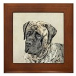 English Mastiff (Brindle) Framed Tile