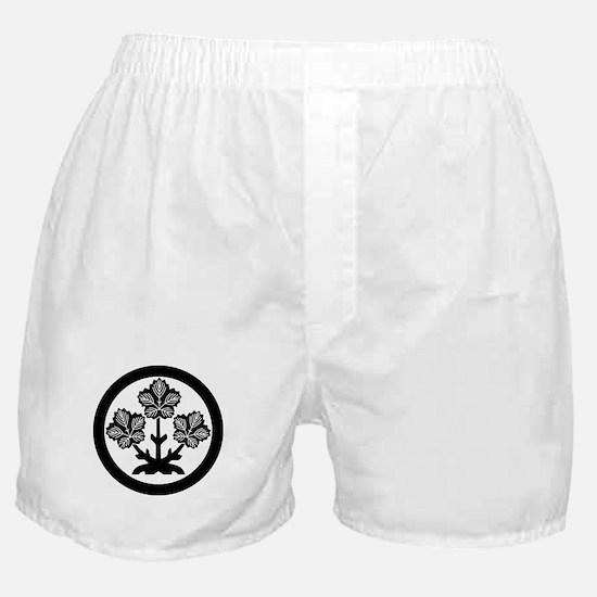 Suwa paper mulberry leaf Boxer Shorts