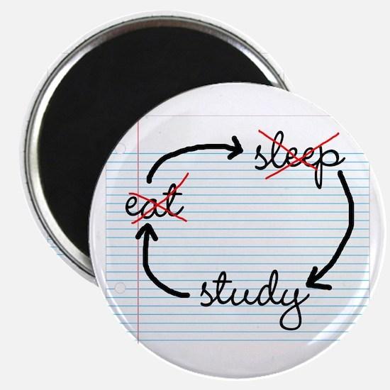 'Study, Study, Study' Magnet