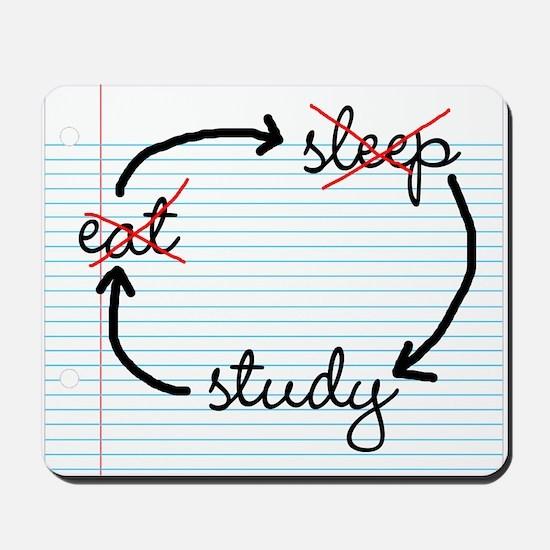 'Study, Study, Study' Mousepad