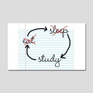 'Study, Study, Study' Car Magnet 20 x 12