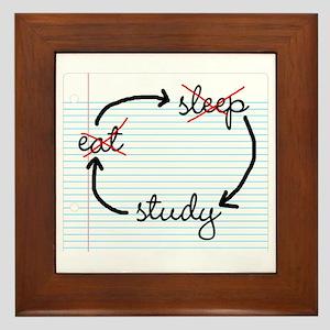 'Study, Study, Study' Framed Tile