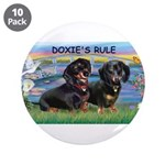 Sunrise Lilies / Doxie's Rule 3.5