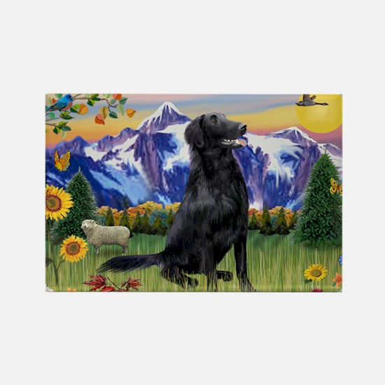 FCR in Mountain Country Rectangle Magnet (10 pack)