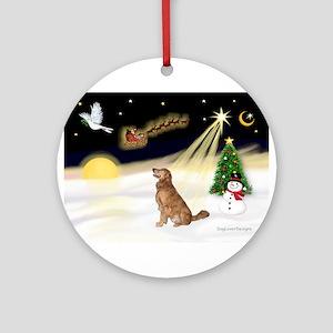 Night Flight/Golden 12 Ornament (Round)