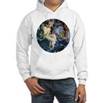 Queen of the Gnomes Hooded Sweatshirt