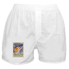 Spark Roast Coffee Boxer Shorts