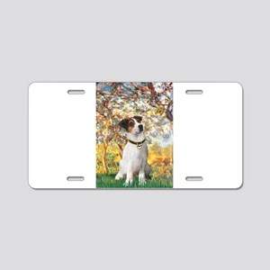 Spring / JRT Aluminum License Plate