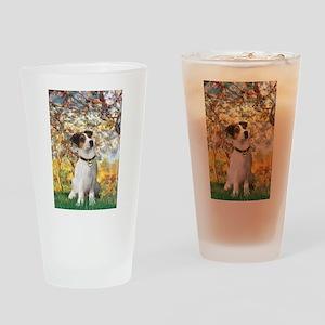 Spring / JRT Drinking Glass