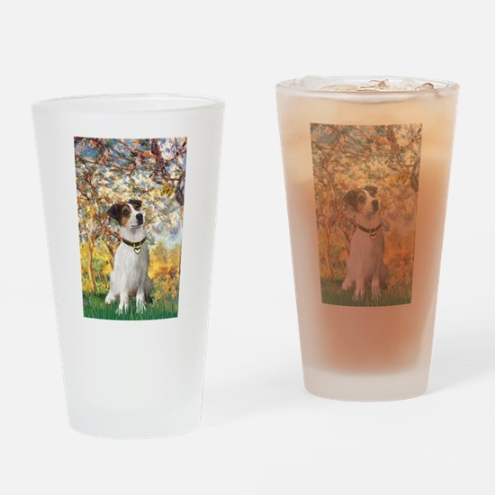 Spring / JRT Drinking Glass