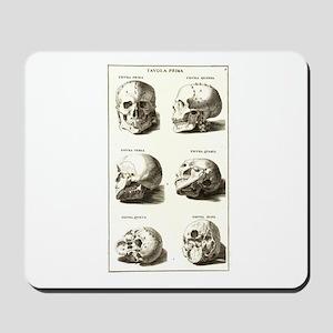 Vintage Skulls Chart Mousepad