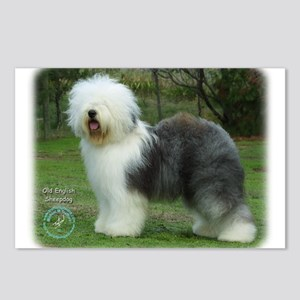 Old English Sheepdog 9F054D-17 Postcards (Package