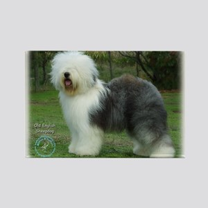Old English Sheepdog 9F054D-17 Rectangle Magnet