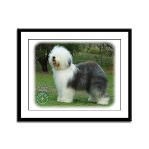 Old English Sheepdog 9F054D-08 Framed Panel Print