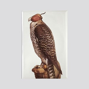 Holbein's Falcon Rectangle Magnet