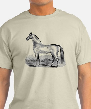 Quarter Horse Artwork T-Shirt
