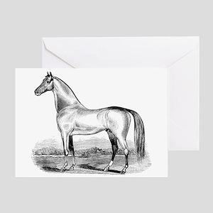 Quarter Horse Artwork Greeting Card