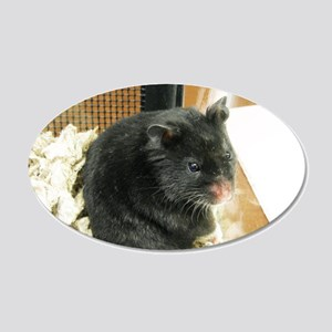 Black Hamster 22x14 Oval Wall Peel