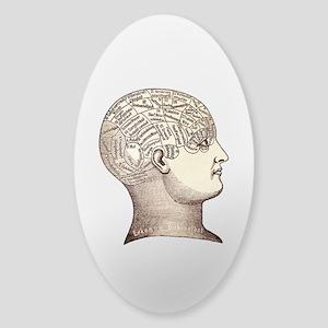 Victorian Phrenology Sticker (Oval)