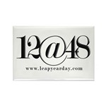 12@48 Rectangle Magnet (100 pack)