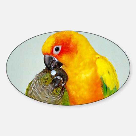 Bird Photo Sticker (Oval)