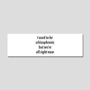 Schizophrenic Car Magnet 10 x 3