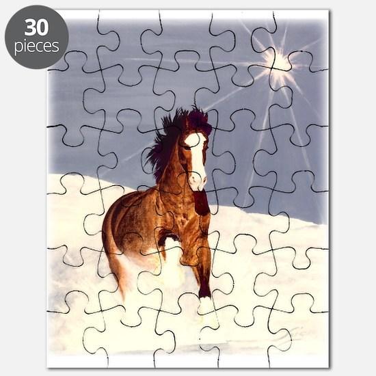Starlight Snow Run Puzzle
