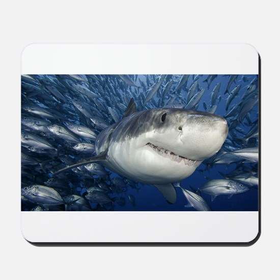 Great White & Co. Mousepad