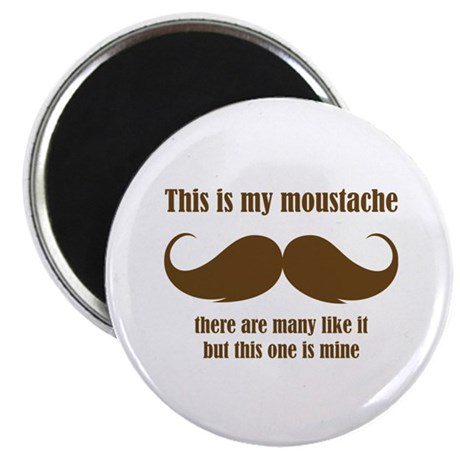 This is my moustache Magnet